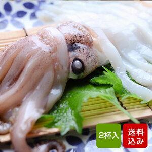 イカ 姿造り スルメイカ 2杯 玄界灘(九州産) おつまみ 海鮮 お中元 ギフト