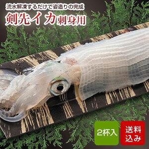 イカ 剣先イカ 刺身用 2杯 呼子イカ 姿造り 玄界灘 ケンサキイカ おつまみ 海鮮 敬老の日 ギフト