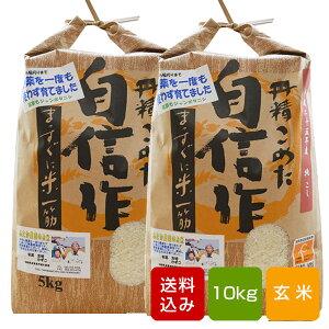 無農薬玄米 10kg コシヒカリ福岡県産 令和元年産