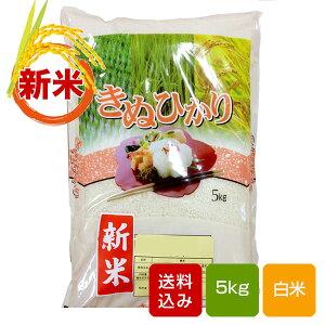 熊本キヌヒカリ 新米 5kg 白米 熊本県産 令和2年産 お歳暮 ギフト