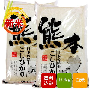 熊本コシヒカリ 10kg 白米 熊本県産 令和2年産 ギフト