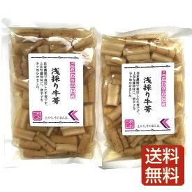 浅採りごぼう 漬け物 2袋入 鹿児島産 メール便