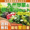 【送料無料】野菜セット & たまご 10個付 & 旬のくだもの付きのお得な野菜セット。九州産