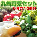 【送料無料】野菜セット 卵10個付 九州 西日本 野菜 野菜セット