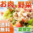 九州野菜とお肉の夏トクトクセット 旬の野菜5〜6種類と人気のお肉2種類セット 【送料無料】