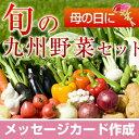 【送料無料】九州野菜のギフト お歳暮 内祝 誕生日祝い 御礼 お供え ギフト プレゼント メッセージ カード
