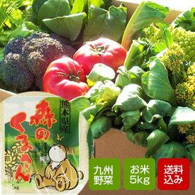 【送料無料】九州野菜セットと森のくまさんのセット