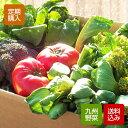 【定期購入】野菜セット 10-12品 九州野菜 西日本 九州 送料無料