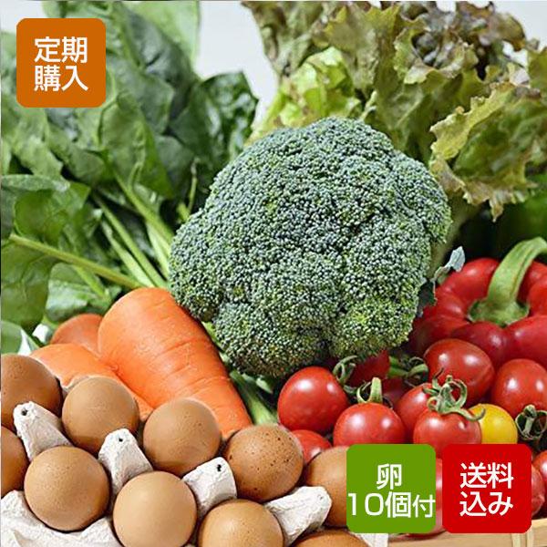 【定期購入】【送料無料】野菜セット たまご10個付きご希望の日にお届けします!