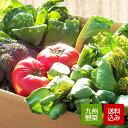 野菜セット 10品 無農薬 減農薬野菜中心 おまかせ詰め合わせ 九州産 西日本 野菜 クール便