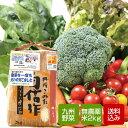 【送料無料】無農薬米と野菜セット 九州野菜 母の日 父の日 ギフト メッセージカード対応 送料無料