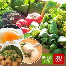 【送料無料】選べる野菜セット 九州野菜7〜9品+卵、牛乳、納豆、豆腐、梅干しからお好み3品を選べます