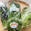 葉もの野菜セット ホウレンソウ 水菜 小松菜 レタスなど葉もの野菜中心の野菜セット