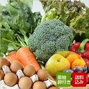 野菜と卵、果物付きセット 野菜つめあわせ 九州野菜 お取り寄せ グルメ ギフト クール便