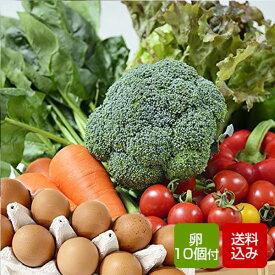 野菜と卵セット 九州野菜 野菜つめあわせ お取り寄せ グルメ 父の日 お中元 ギフト