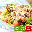 野菜とお肉のお得セット 旬の野菜5〜6種類と人気のお肉2種類セット 【送料無料】
