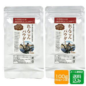 れんこんパウダー 100g (50g×2袋) 無農薬 離乳食 野菜パウダー メール便
