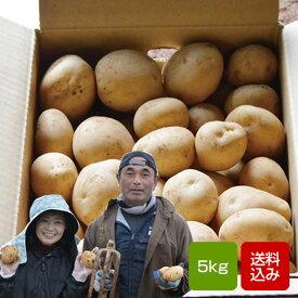 じゃがいも 5kg 出島 新ジャガイモ 長崎県島原産 お歳暮 送料無料