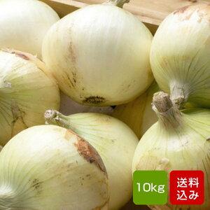 たまねぎ 10kg 玉ねぎ/タマネギ/玉葱 長崎産