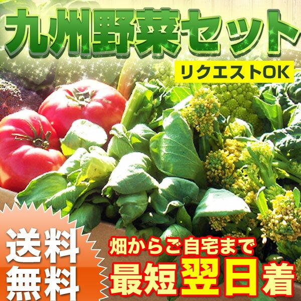 【送料無料】【あす楽】野菜セット 旬の九州野菜 おまかせ詰め合わせ 野菜セット 九州 西日本 野菜