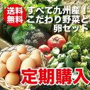 【定期購入】【送料無料】野菜セット たまご10個付きご希望の日にお届けします! 【送料無料_spsp1304】【半額以下_spsp1304】