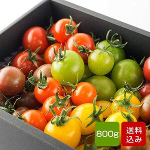 トマトの宝石箱 フルーツトマトの詰め合わせ お歳暮 ギフト