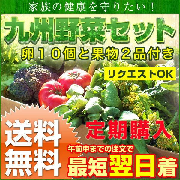 【定期購入】【送料無料】九州野菜と卵、旬の果物セット
