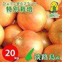 20キロ 中生品種ターザン 特別栽培 有機肥料使用 送料無料 令和3...