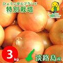 3キロ 中生品種ターザン 特別栽培 有機肥料使用 送料無料 令和3...