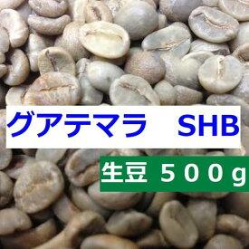 【あすつく】生豆 グアテマラ SHB 500g  アサヒコーヒー 自家焙煎 旭コーヒー スペシャルティコーヒ−