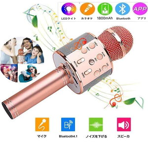 カラオケマイク スイッチ Bluetooth カラオケ機器 業務用 無線マイク dam 高音質 ワイヤレスマイク 家庭用 音楽再生/エコー/録音可能 人気 一人でカラオケ Android/iPhoneに対応