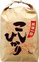 [ギフト 米袋]米袋 ひも付クラフト 美味一筋こしひかり10kg用×20枚