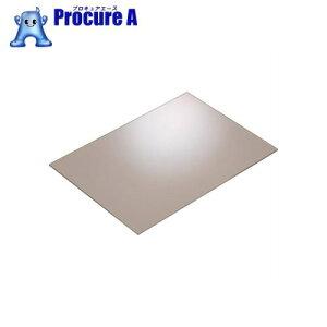 IWATA アクリル板 (透明) 2mmACPC-300-300-2▼148-9910(株)岩田製作所
