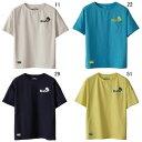 カンタベリー【CANTERBURY】S/S Tシャツ 2017SS NEW セール RA37056