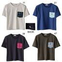 カンタベリー【CANTERBURY】レディスS/S Tシャツ2017SS NEW セール WA37338