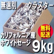 ホワイトセージ業務用クラスター9kgボックス