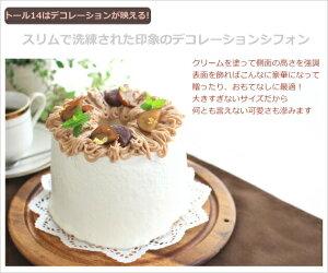【浅井商店開発トールシフォン型第二弾!】つなぎ目のないアルミトールシフォンケーキ型14cm