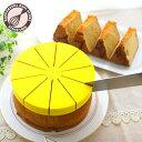 シフォンケーキ用カットアシスタント 20cm