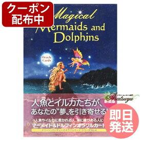 【クーポン(マラソン限定)】【もれなくプレゼント】マーメイド&ドルフィンカード