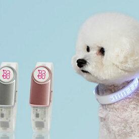 再入荷 ネオポップ 光る首輪 犬名前入首輪 NEOPOP 首輪小型犬 迷子防止首輪 首輪LED 充電はUSBケーブル neopop led band