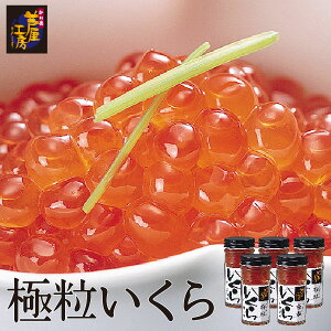 極粒いくら だし醤油味 ギフト 5本入 北海道 イクラ 魚卵