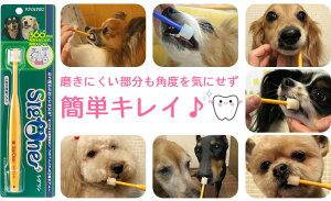 小型犬用歯ブラシビバテックシグワングッズ【ペットグッズ犬の歯磨き犬のはみがきデンタルケアパグコーギー犬用品お手入れドッグ】