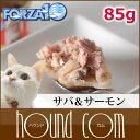 Forza0052