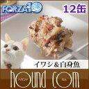 Forza0057set