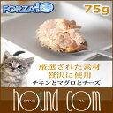 Forza0062_sum