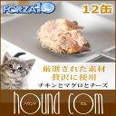 Forza0062set_sum