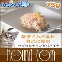 Forza0063 sum