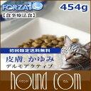 Forza0072s_sum