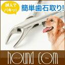 Dent-0018-smn