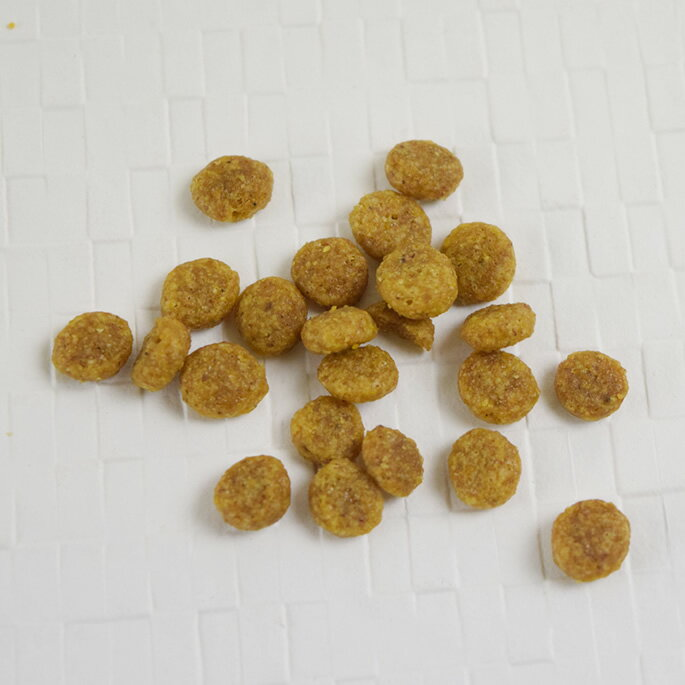 Schesirシシアドッグアダルトベジタル800g小型成犬用総合栄養食